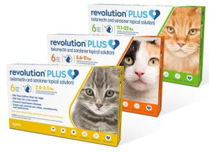 A Cat Clinic, Germantown, MD carries Revolution Plus for parasite prevention in cats