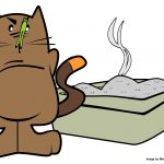Five Litter Box Tips from the Cat's Point of View    A Cat Clinic, Germantown, MD