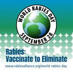 Rabies in cats is prevented by vaccinating